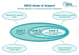 Students can be supported to achieve and succeed at school by developing 'Behaviour for Learning Skills', Social and Emotional Literacy Skills, Academic Literacy, Learning and Study Skills and Positive Health and WellbeingSkills.