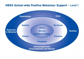The NBSS sees a school-wide approach to positive behaviour as fundamental to its work with schools. At Level 1 the NBSS works with schools, for example, on vision, mission, systems, structures, policies, practices, rules, routines and expectations.