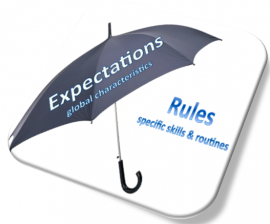 Expectations and rules are key elements of school-wide positive behaviour support.