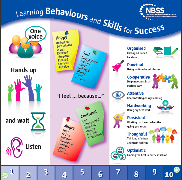 behaviour for learning nbss